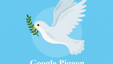 تصویر از بررسی الگوریتم کبوتر